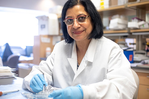 Menna Sukhwani at the Orwig Lab Bench