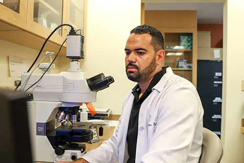 Andre Caldeira-Brant, Post Doctoral Fellow in the Orwig Laboratory